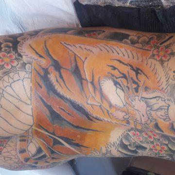 Tatouage japonais tigre et dragon