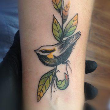 Tatouage oiseux sur branche en couleurs